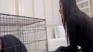 AsianMeanGirls - Cat Burglars Revenge