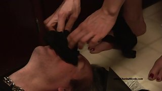 Jean Bardot - STINKY SWEATY FOOT PARTY FEET LICKED CLEAN