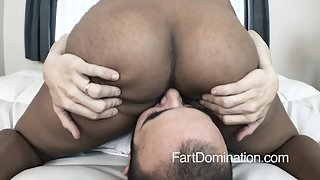 Fart-Domination - 1154_Royalty 2