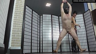 Bella squeezes the slave's balls